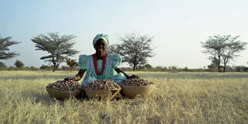 Woman sitting in field with marula