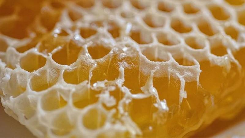 Panel de miel
