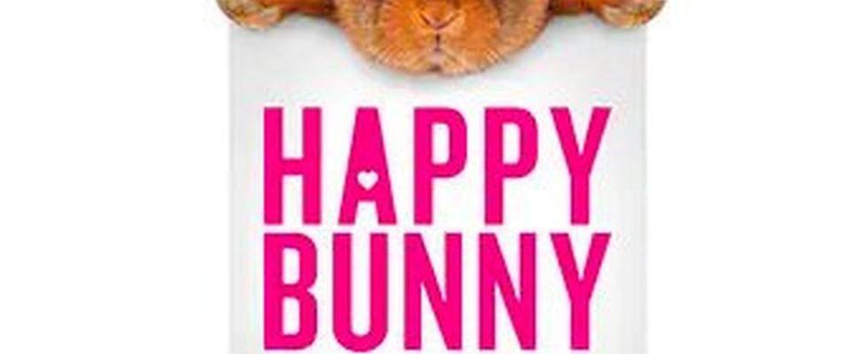 Banderoll för 2013 Happy Bunny