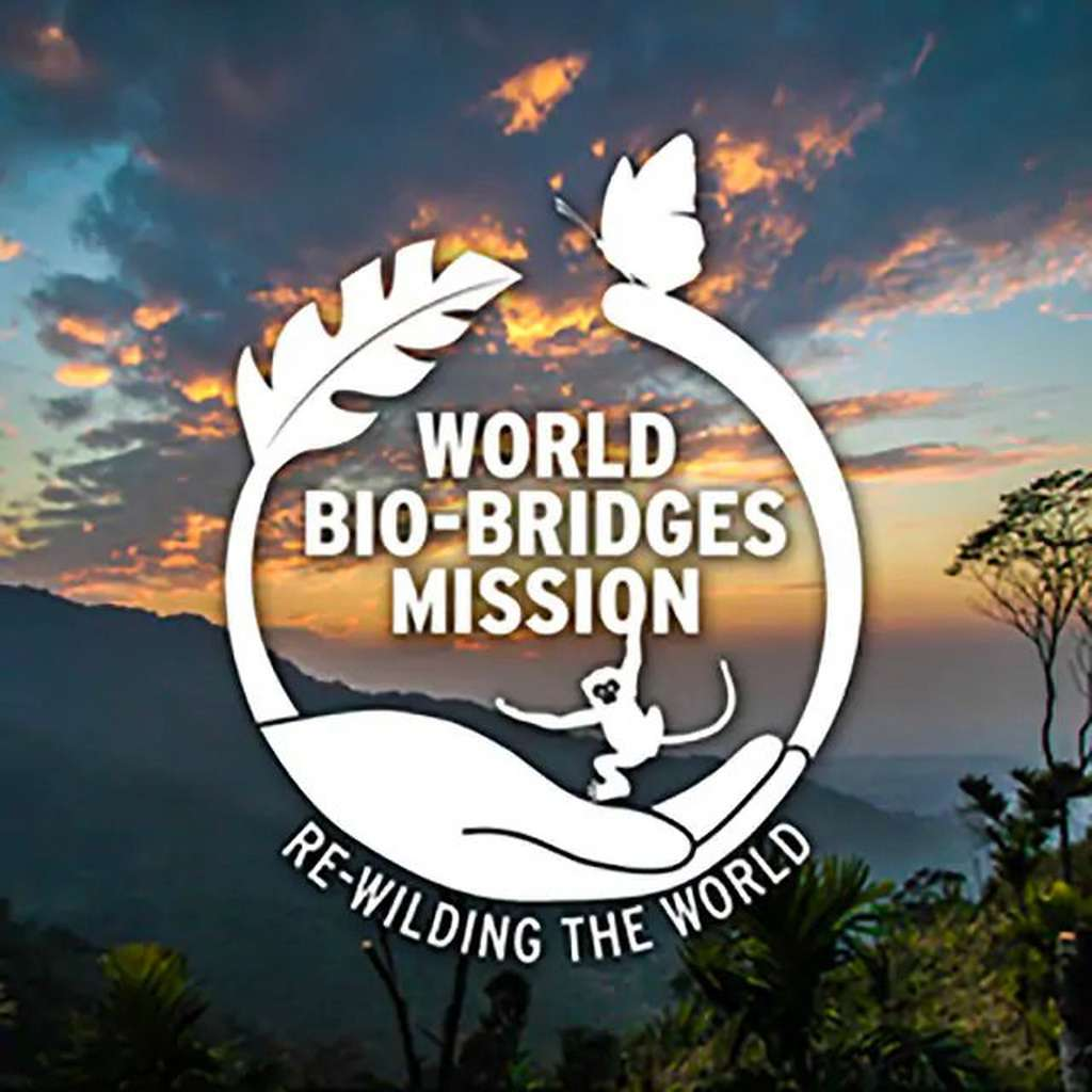 2016 World Bio-bridges Mission logo