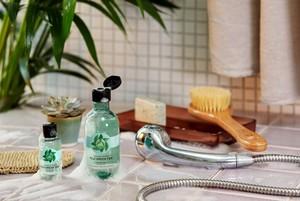 The Body Shop Fuji Green Tea Hair Care
