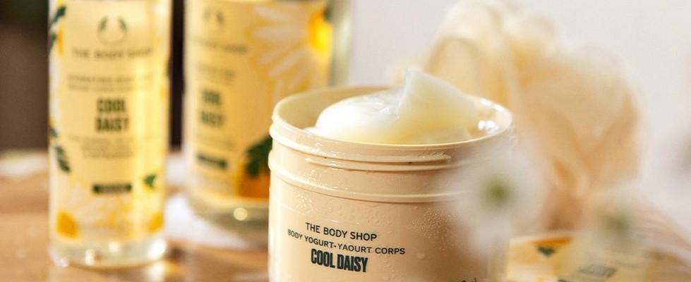 Cool daisy Serie